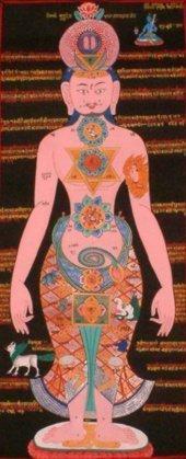 A visão do corpo no Hatha Yoga 2