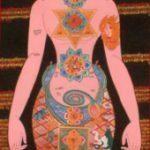 A visão do corpo no Hatha Yoga 9